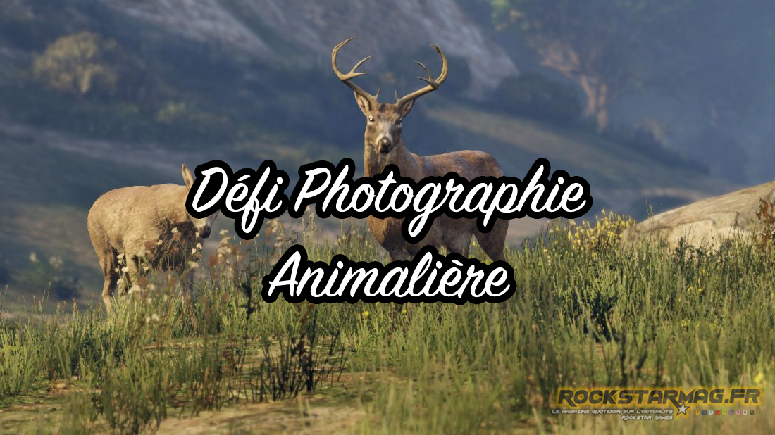 defi-photo-animaux-gta-5