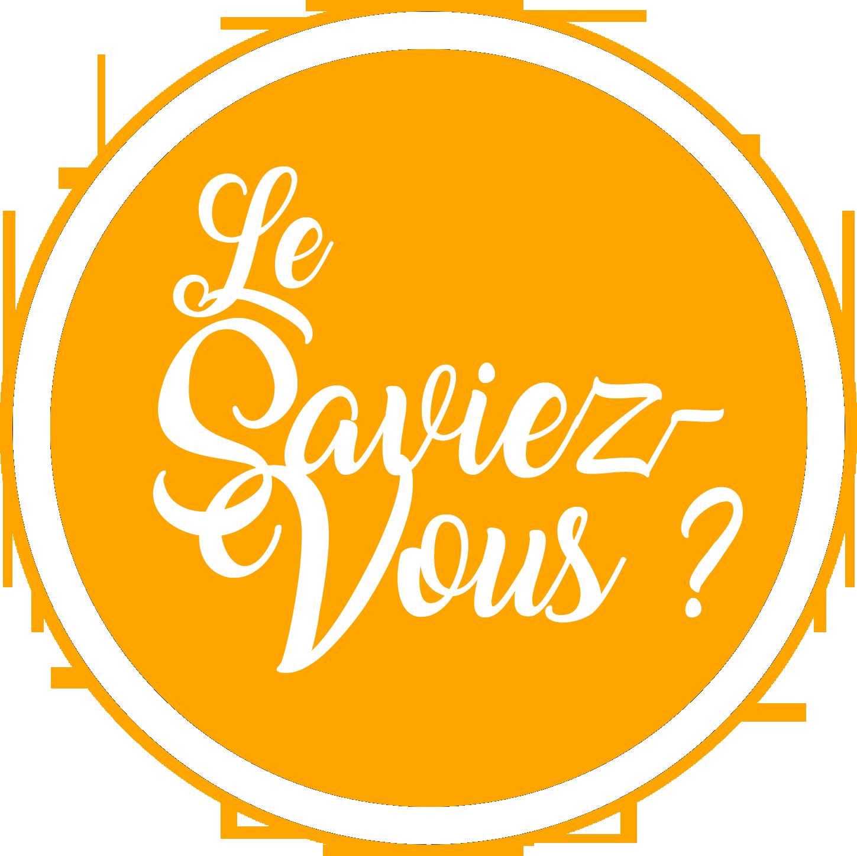 Logo Le Saviez Vous Rockstar Mag