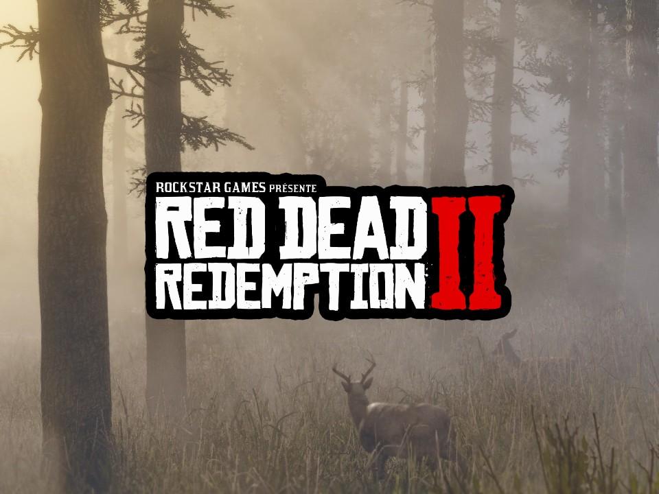 Pluis d'informations Red Dead Redemption II