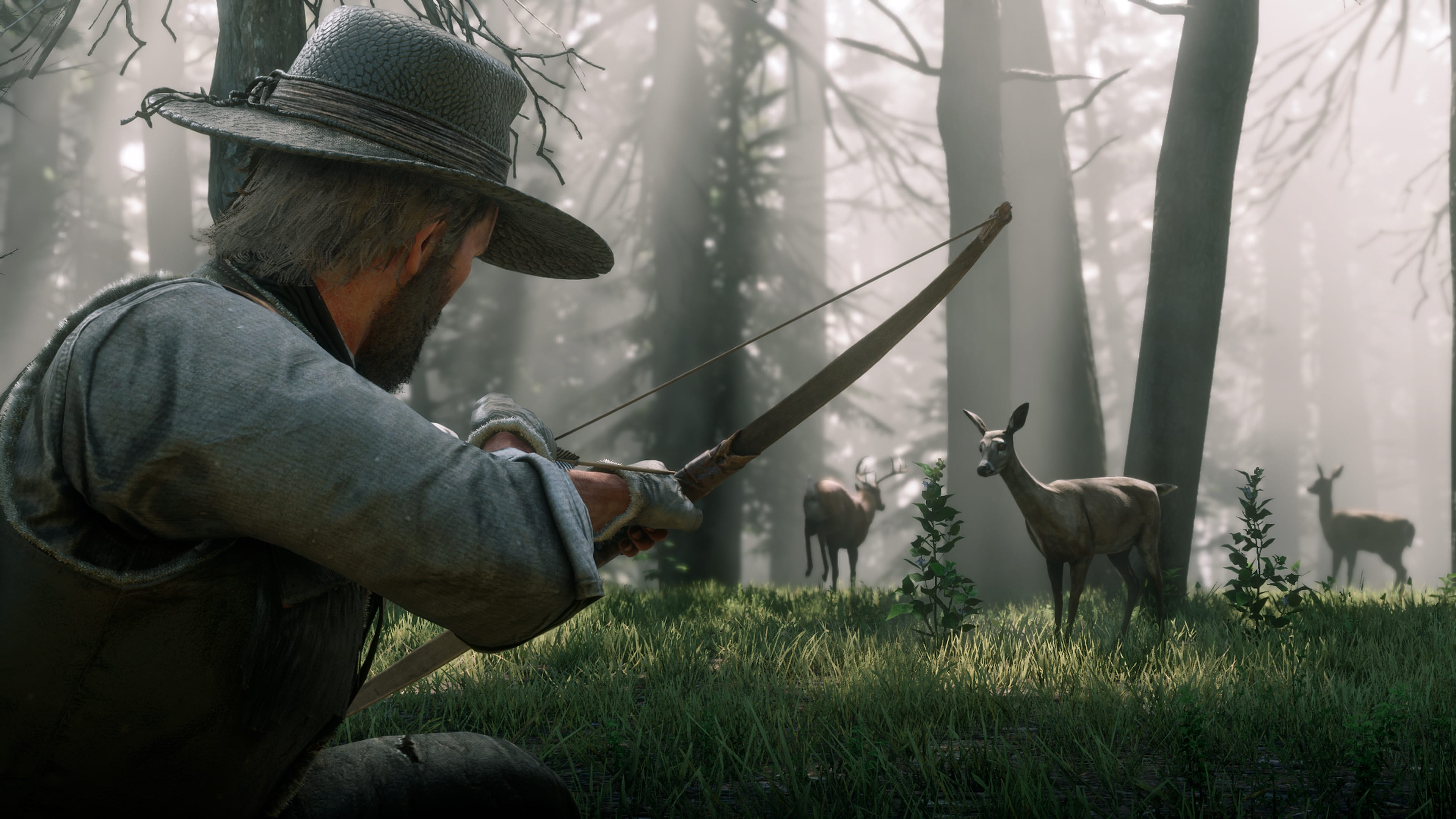 Red Dead Redemption II Chasse