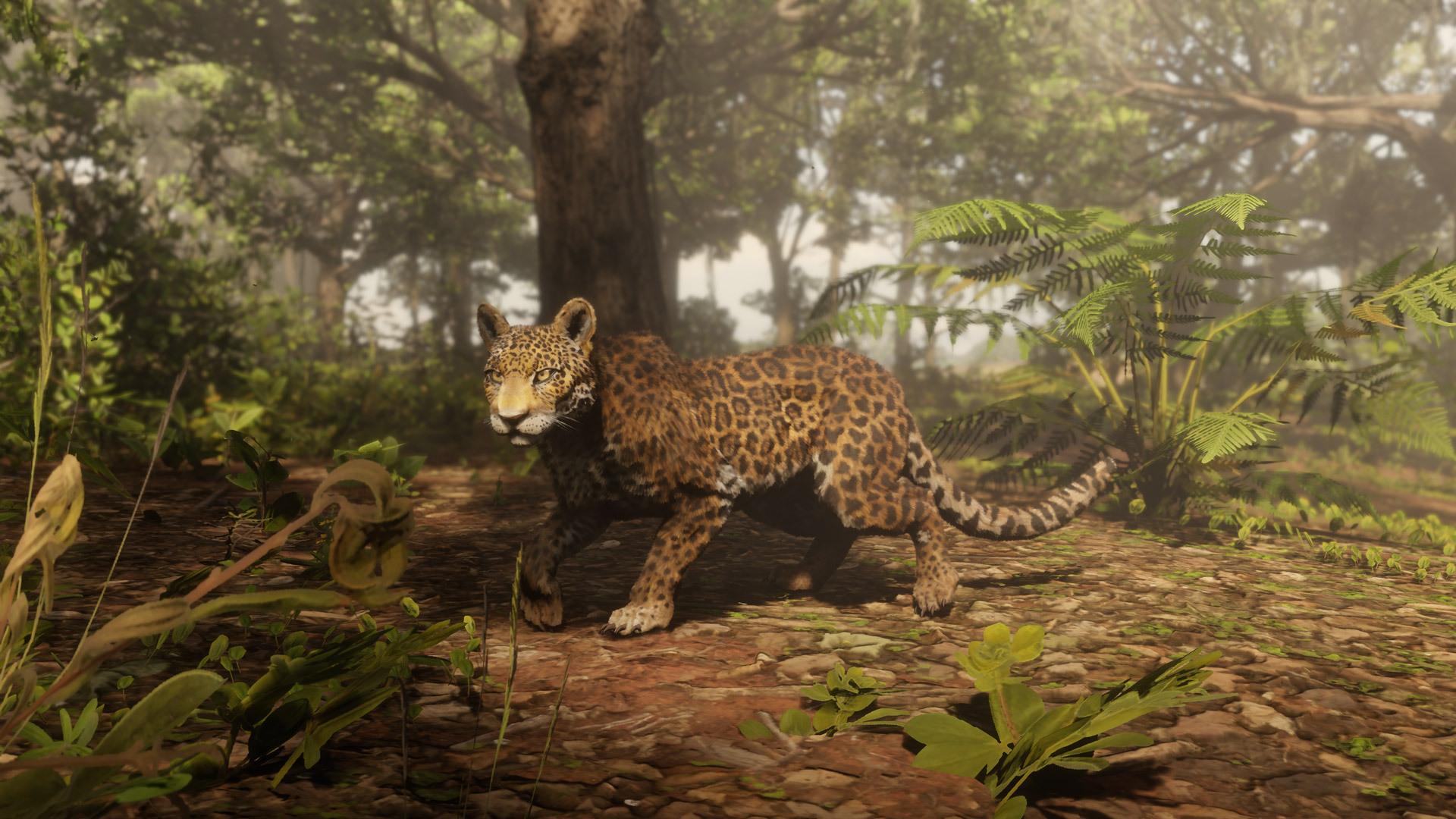 leopard Red Dead Online