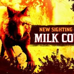ban_coyote-laiteux-legendaire