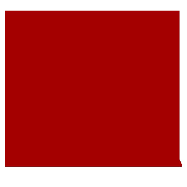 Logo Google Staida Rouge Carmin